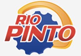 Desafío Pinto